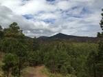 SF peaks view from road