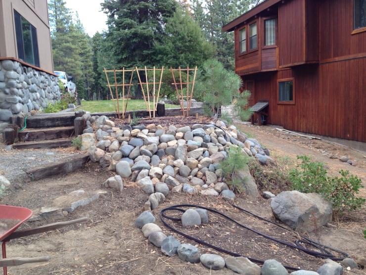My New Garden in Lake Tahoe, Fall 2013