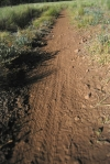 Mtn. Bike Evidence in Bismark PWA
