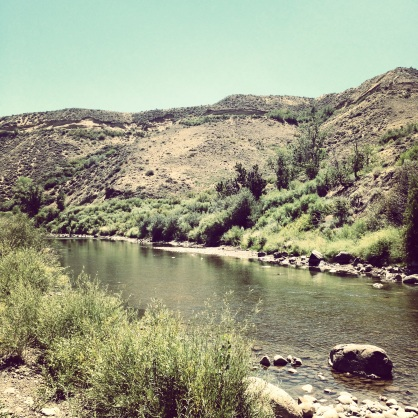 The Truckee River. View from Mayberry Park. West Reno.