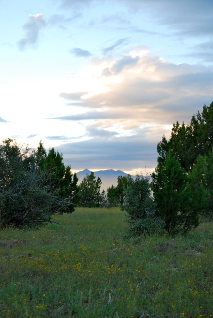 Another view of the San Francisco Peaks