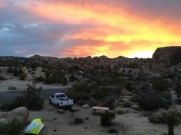 Jumbo Rocks Campsite